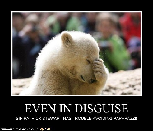 polar bear disguise patrick stewart facepalm paparazzi avoiding - 6614947584