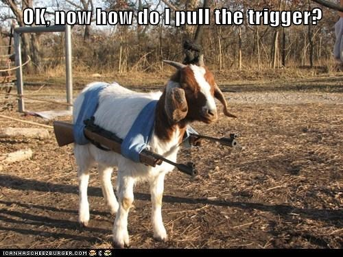 goat,trigger,how do i,guns,confused
