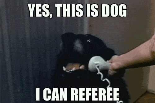 bad refs dogs football hello yes this is dog Memes referees this is dog - 6615812096