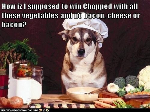 Cheezburger Image 6616043264