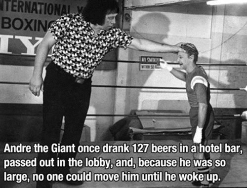 andre the giant hotel bar too big to carry too drunk - 6616389632