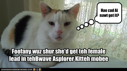 Foofany wants to star in teh Bwave Asplorer Kitteh movie