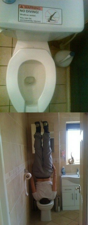 cool,diving,toilet