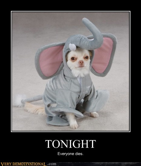 costume,dogs,elephant,mad,poor bastard