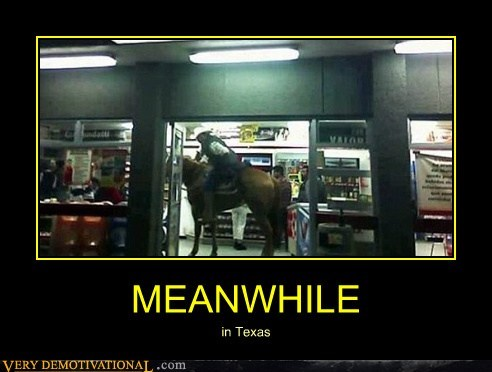 horse store texas wtf - 6616547072