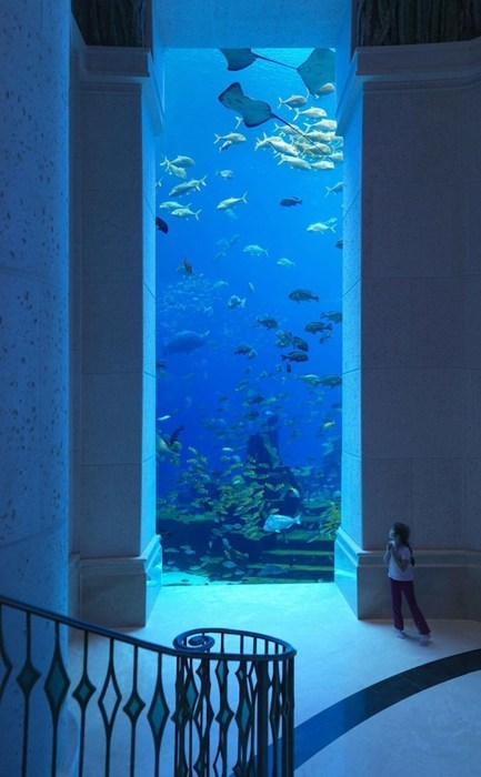 aquarium design hotel underwater - 6616585984