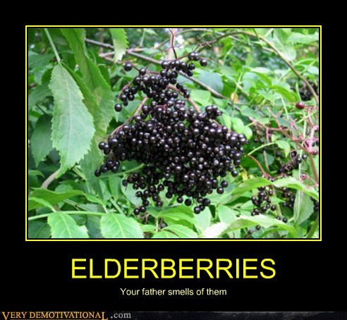 elderberries Father monty python smell