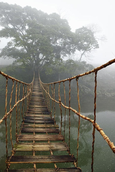 bridge,fog,landscape