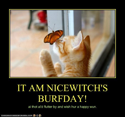 IT AM NICEWITCH'S BURFDAY! ai thot ai'd flutter by and wish hur a happy wun.