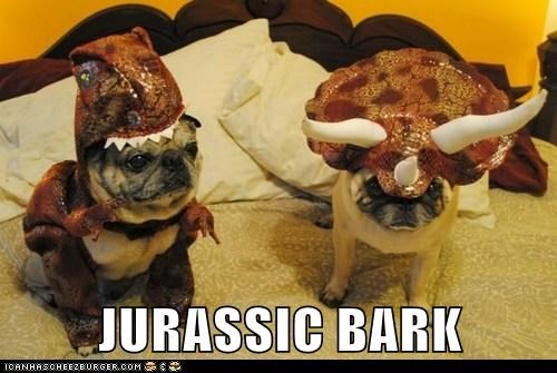 costume,dogs,pug,tyrannasaurus rex,dinosaur,jurassic park,triceratops