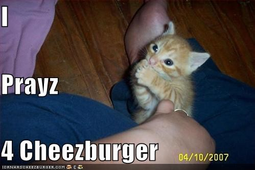 Cheezburger Image 661824768