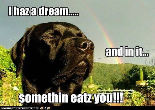 i haz a dream..... and in it... somethin eatz you!!!