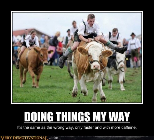 awesome cow racing is faster my way wrong way - 6618323200
