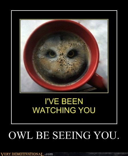 coffee eyes Owl pun - 6618472192