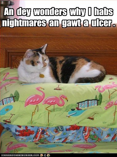 busy captionss cat gross nightmares pattern standards style ugly ulcer