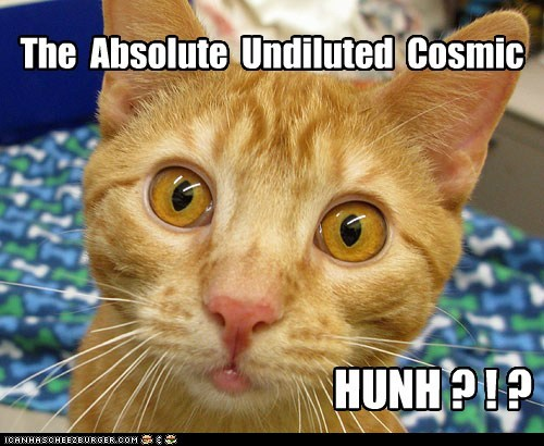 The Absolute Undiluted Cosmic HUNH ? ! ?