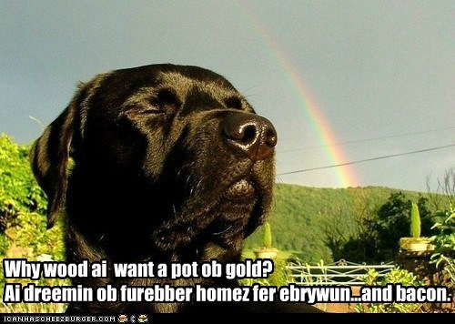 Why wood ai want a pot ob gold? Ai dreemin ob furebber homez fer ebrywun...and bacon.