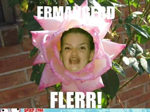 FLERR