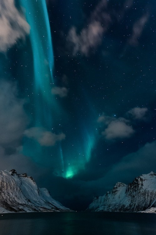Astronomy,aurora,gorgeous,night,stars