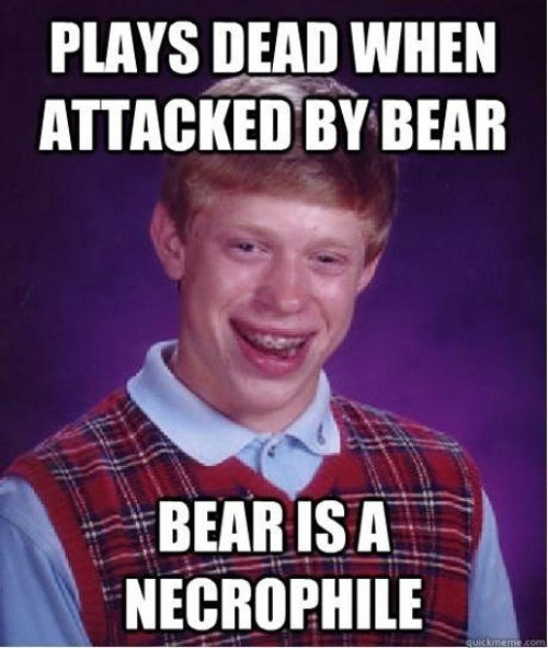 bad luck brian,bears,dead