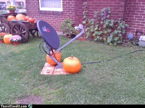 dish network,pumpkins,satellite dish
