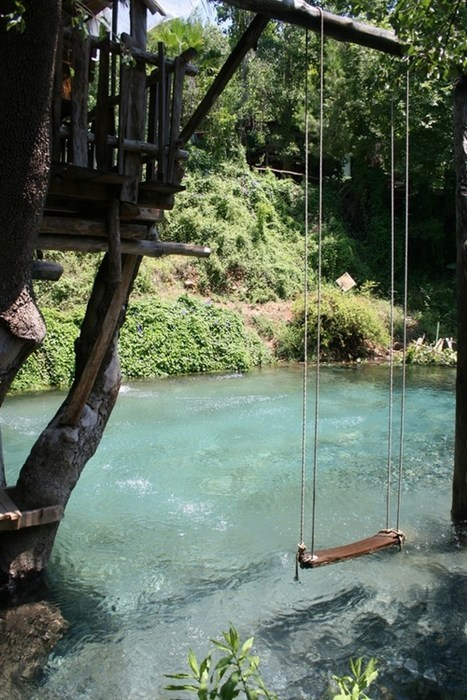 camping pool river swing tree house categoryimage - 6619920640
