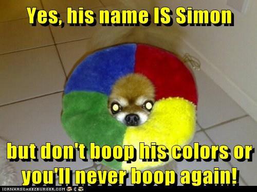 pomeranian game dogs simon says boop bite - 6620110080