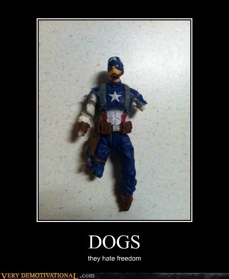 captain america,dogs,toys