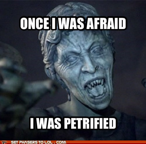 weeping angel,petrified,i will survive,song,doctor who