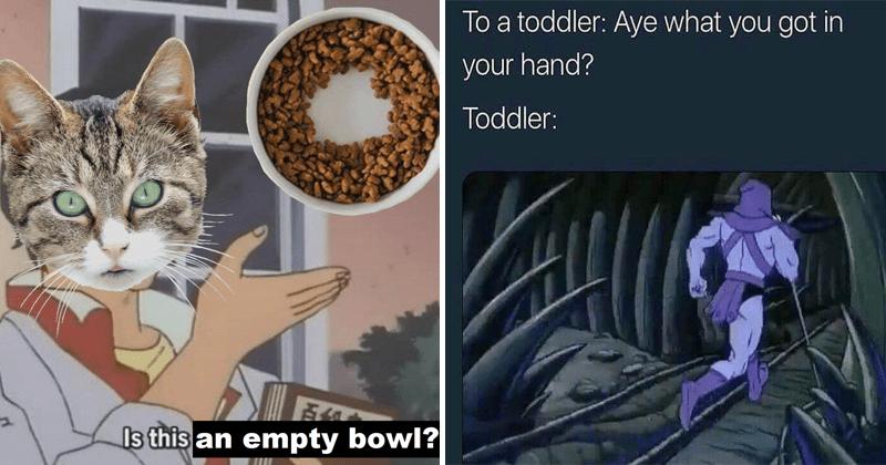 Funny random memes, animal memes, cat memes, kids, funny memes, hilarious memes, opossums.