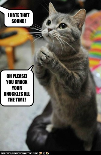 captions Cats crack hands knuckle knuckles paw sound