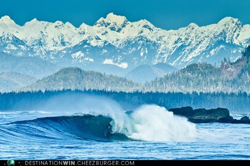 surfing tofino landscape mountains waves