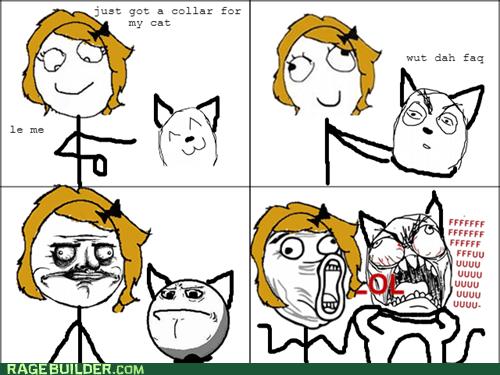 cat collar fu guy me gusta pets - 6621601536