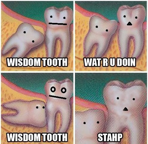 roots,wisdom teeth,teeth!,teeth are the new bees,stahp,teeth