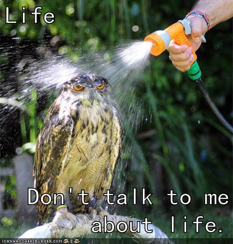 life dont-talk-to-me Sad marvin the paranoid android Hitchhikers Guide To the Galaxy quote - 6622256384