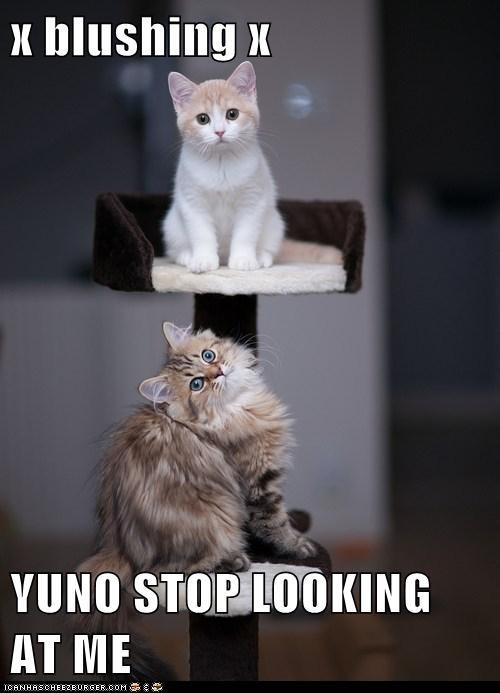 x blushing x  YUNO STOP LOOKING AT ME