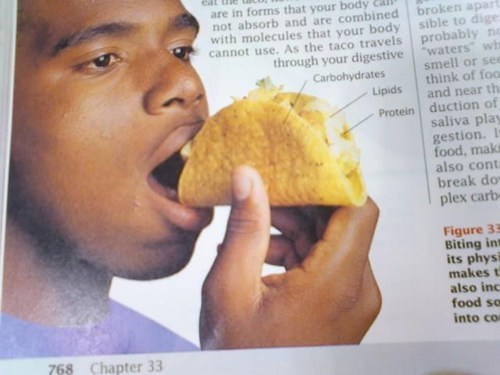 eating,example,food,school,taco,textbook