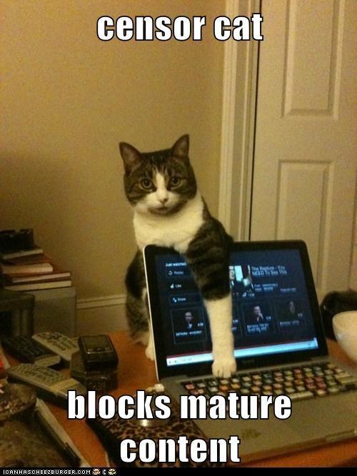 censor cat  blocks mature content