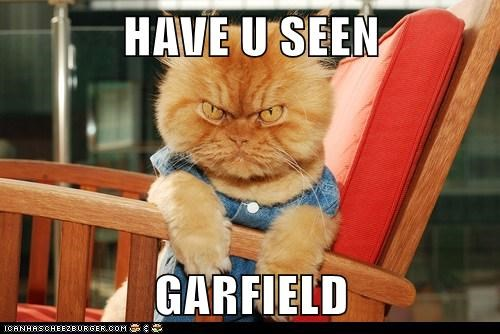 Have U Seen Garfield Lolcats Lol Cat Memes Funny Cats Funny Cat Pictures With Words On Them Funny Pictures Lol Cat Memes Lol Cats
