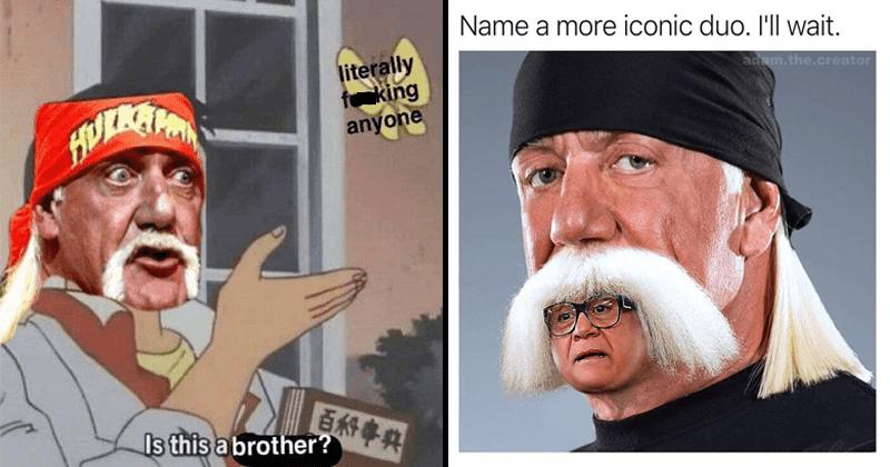 Funny hulk hogan memes, wrestling memes, loops, danny devito.