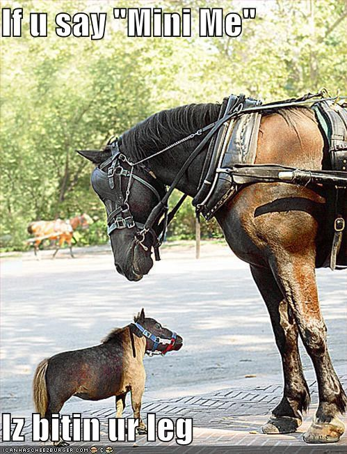 austin powers film horses mini me movies - 662324992