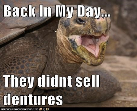 old,turtle,dentures,back in my day,sell,toothless