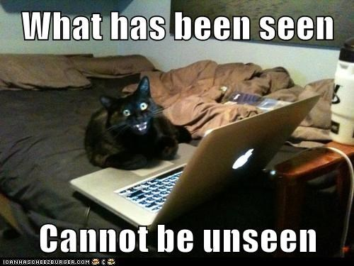 what has been seen cannot be unseen what has been seen tramatic internet laptop Cats captions - 6623623680