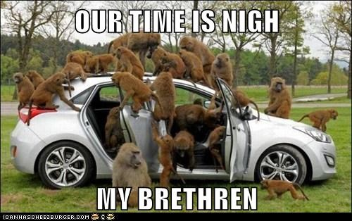 imminent,nigh,monkeys,Planet of the Apes,car,brethren,taking over