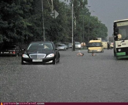 puddles,swimming,road,traffic