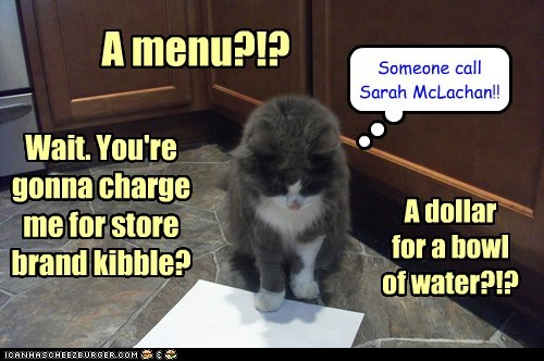 abuse,menu,captions,Sarah McLachlan,restaurant,expensive,Cats