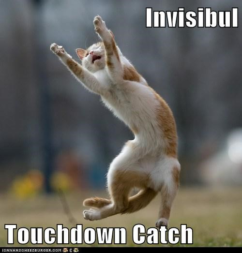 captions,Cats,football,goal,invisible,sports,touchdown