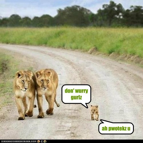 lions cub kid confident little dont worry protection