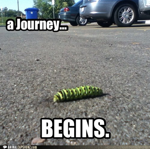 caterpillar,parking lot,journey,begins,slow,long distance,relativity
