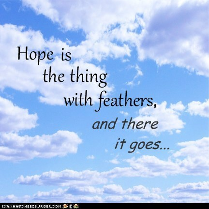 birds,feathers,goodbye,hope